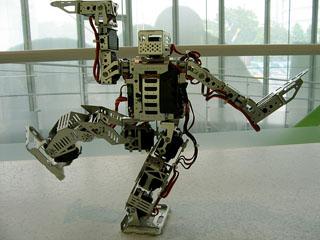 tokyo-remotcontrolledrobot